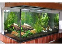 Sea Planet Custom Aquariumbau 1200 Liter Raumtrenner